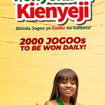 Kenyan-Post-300×600-Kuku