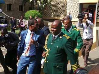 VIDEO of MP Opiyo Wandayi being thrown out of Parliament