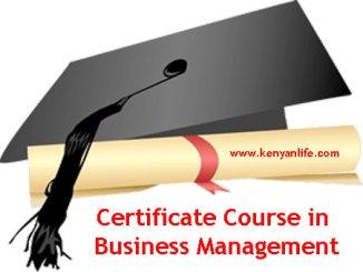 Colleges, Schools and Universities offering Certificate Course Business Management, Nairobi County, Nakuru, Mombasa, Kisumu, Nyeri, Embu, Meru, Garissa, Kisii, Eldoret, Thika, Kiambu, Muranga,