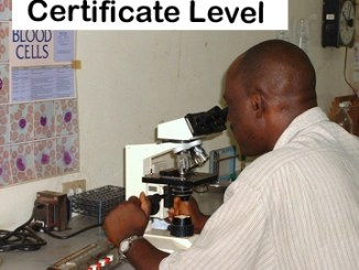 Schools, Colleges & Universities offering Science Medical Laboratory Technology Certificate, Technician, Certification, Course details, Contacts, County