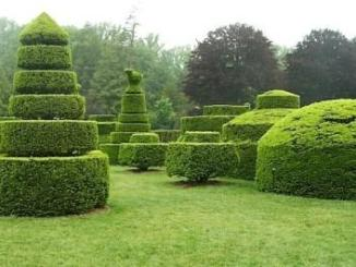 Best Ornamental Horticulture Colleges - Certificate & Diploma Course