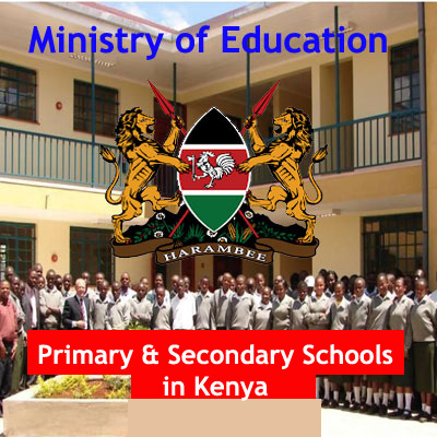 Primary Schools in Kenya, Secondary Schools in Kenya