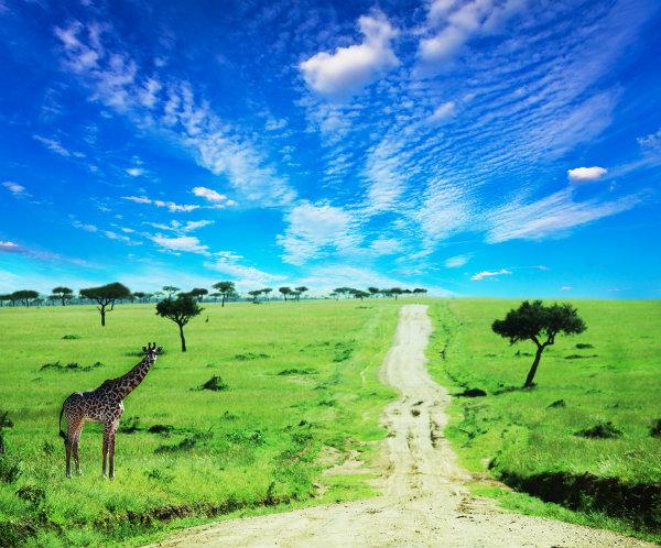 Kenya-Scenery