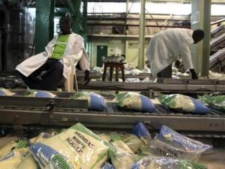 Workers arrange packets of sugar on a conveyor belt at the Mumias sugar factory in western Kenya,