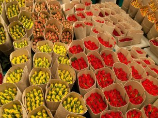 Kenya flowers (Credit; Citizen TV)