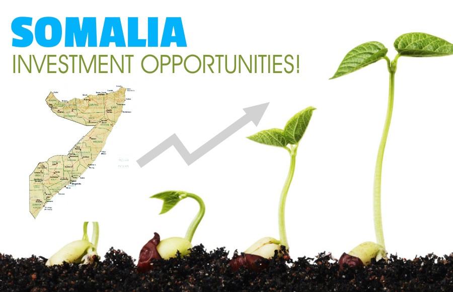 investment_somalia4