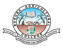 Bukura Agricultural College Tenders