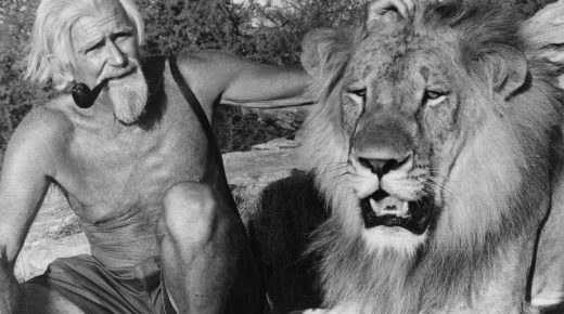 Christian The Lion Born to be Free