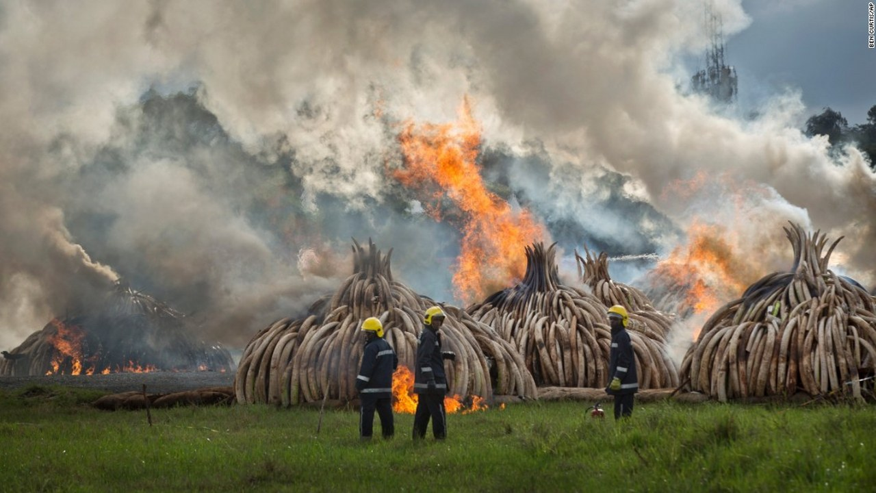 Ivory Burning Site Monument in Nairobi National Park