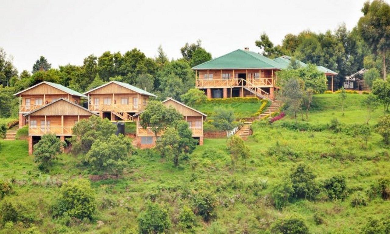Luxury Safari Accommodation Bwindi Impenetrable National Park Uganda