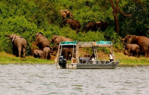 Uganda Safari tour 9 days