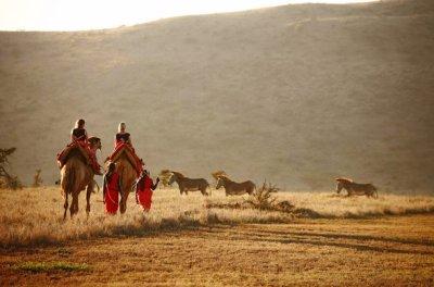 Laikipia & Mathews Range Wildlife Conservancies