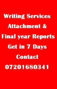 attachment report writing service