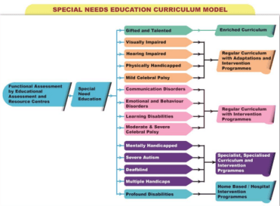 learners with special needs new curriculum model in kenya