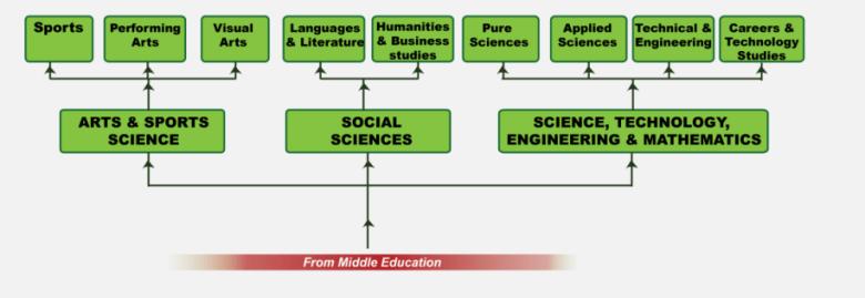 senior school learning subjects in kenya new curriculum