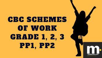 Term 1 CBC schemes of Work, 2019 (Grade 1, 2, 3, PP1, PP2): pdf