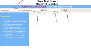 website page for downloading form one admission letter