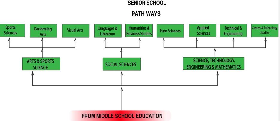 CBC Senior School Subjects and pathways