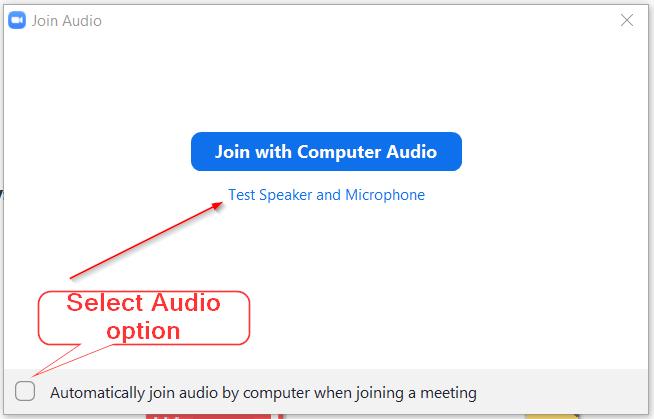 Zoom Audio Option