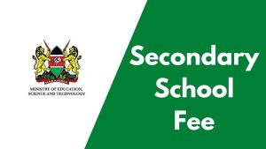 Secondary school fees in kenya and government funding stats
