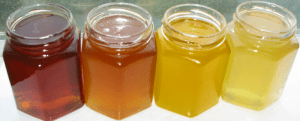 Different Honey Varieties