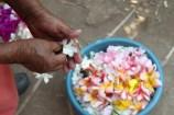 handsflower1