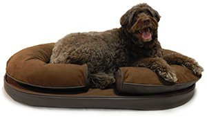 KEPP Charlie Collection in Cocoa Suede with large brown dog