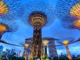 Menelusuri Keunikan Dunia Tanaman di Gardens by The Bay Singapura