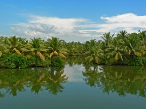Kerala Tourism Places Pictures 11