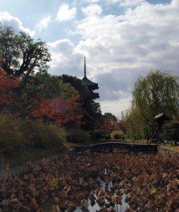 Kyoto Toji Tempel