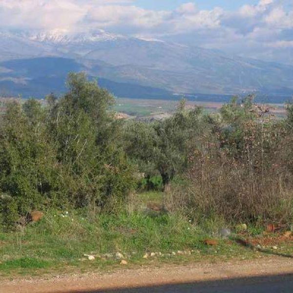 Landschaft bei Pamukkale