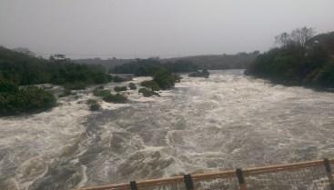 Der Nil. Tiere konnten wegen der schnellen Fahrt nicht fotografiert werden.