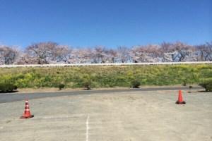 熊谷さくら祭り 駐車場