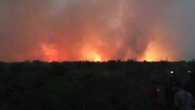 Photo of Kebakaran Hutan Riau Meluas Mencapai 841 hektare