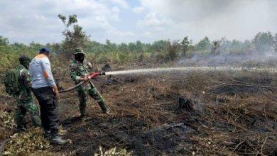 Photo of Hot Spot Kebakaran Hutan Dan Lahan di Provinsi Jambi