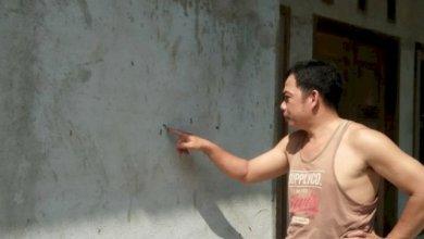 Photo of Pemukiman Warga di Bungo Diserang Hama Ulat Bulu