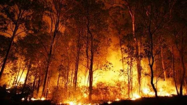 Photo of Sumatera Terdeteksi 85 Titik Panas, Terbanyak di Riau