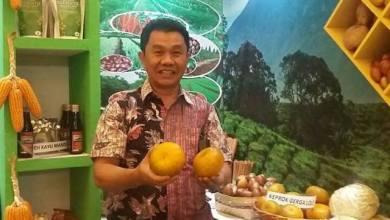 Photo of Aneh! Pengadaan Bibit Bawang Putih 2019 Senilai Rp. 4,5 M Malah Dibagikan 2020?