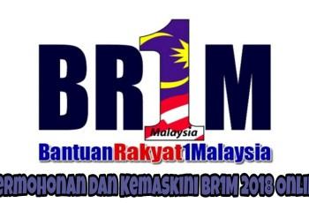 Permohonan dan Kemaskini BR1M 2018 Online
