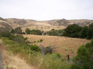 The road to Pinnacles National Monument.