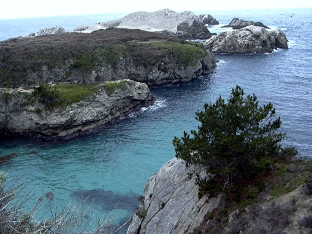 Point Lobos, near Carmel