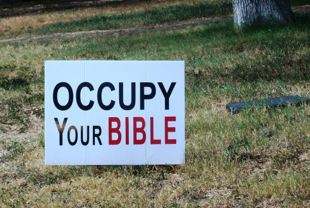 "You know you're in the south when you see yard signs that say ""Occupy Your Bible""."