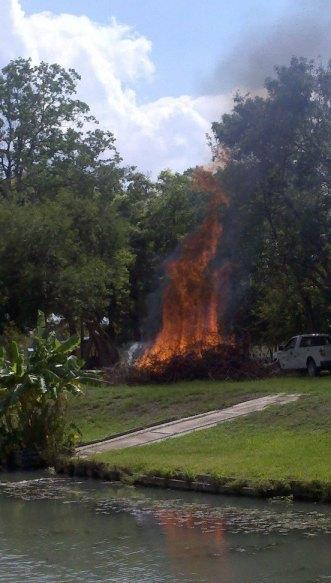 Burning brush. Not it suburbia.