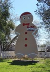 Gingerbread Cartman in Smithville, Texas.
