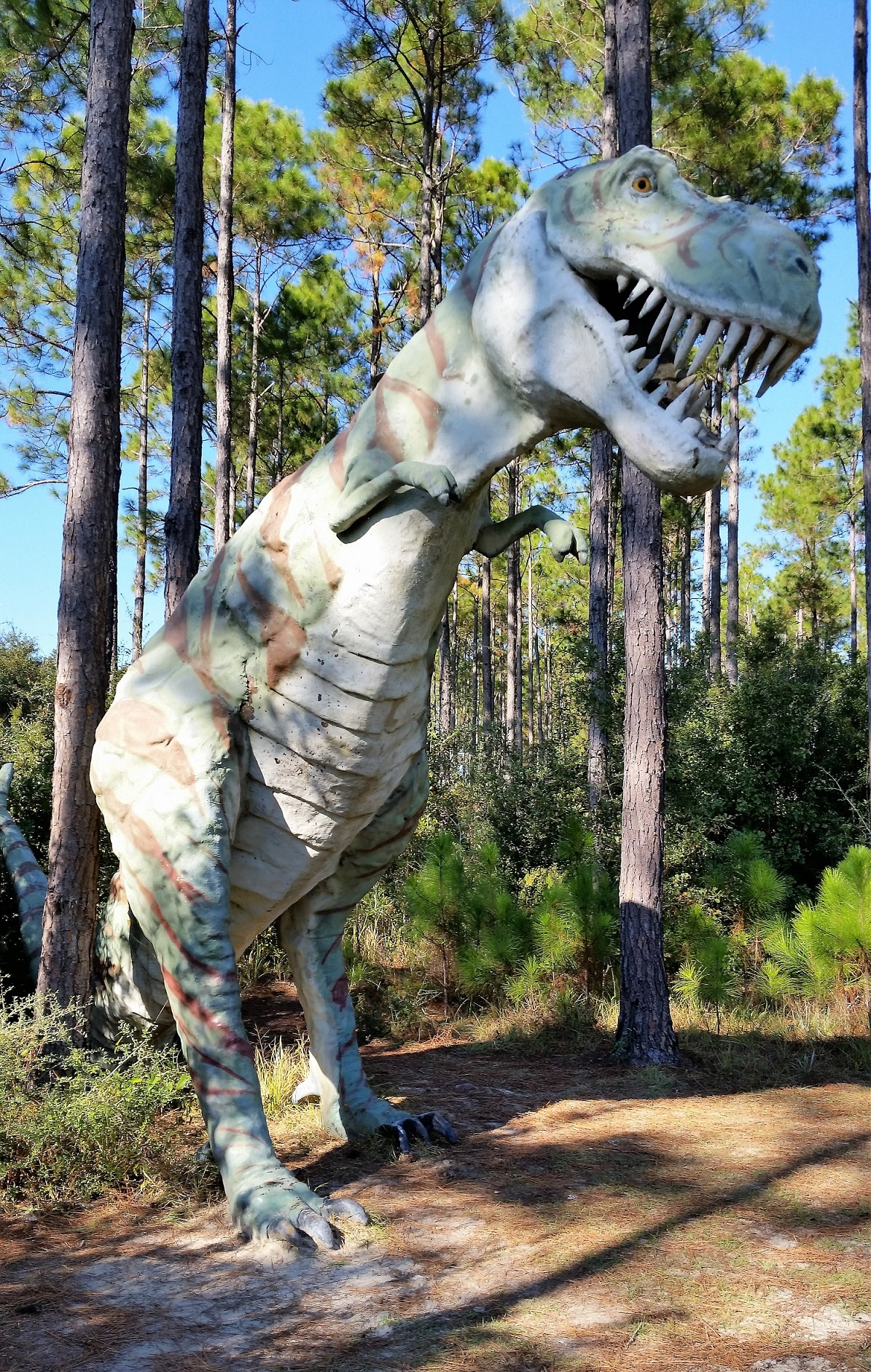 T-Rex in Elberta, Alabama