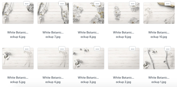 10 free styled stock images from the white botanical collection
