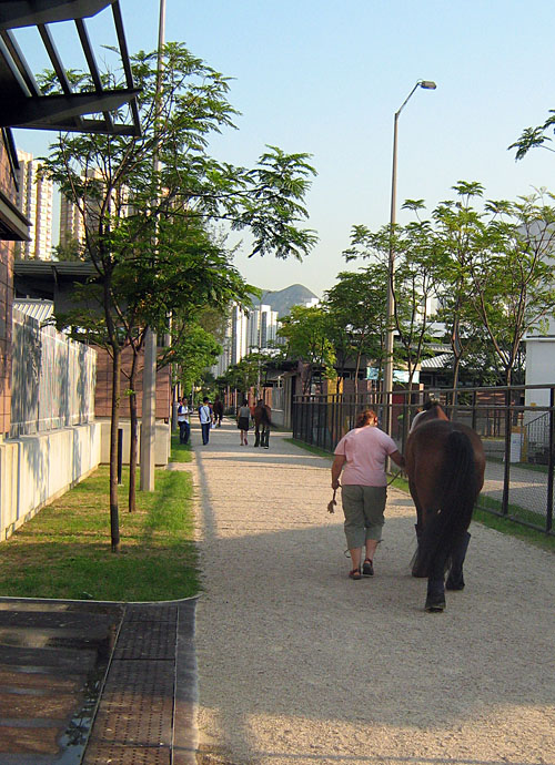 walking towards the stables