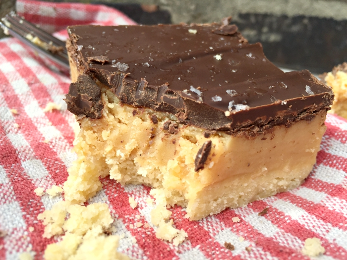 Peanut Butter Millionaire Shortbread Bars - SO addictive!