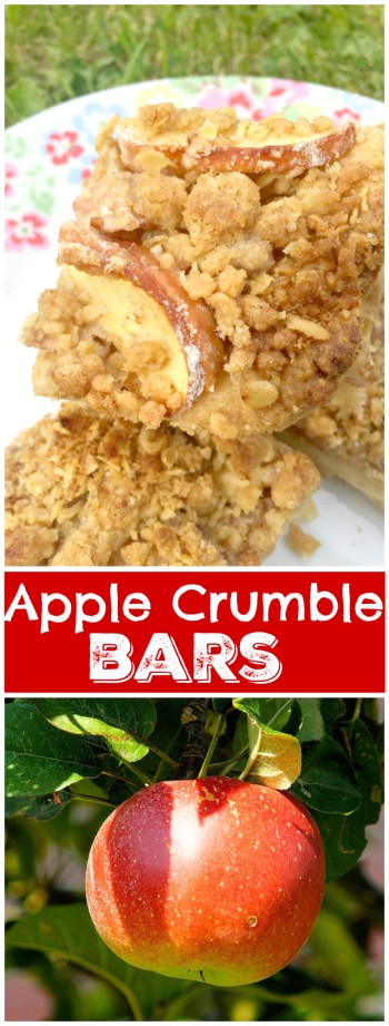 Buttery shortbread crust, delicious cinnamon apple filling and addictive streusal on top! You HAVE to make these Apple Crumble Bars 🍎