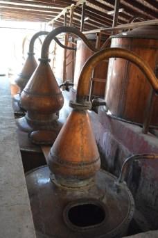Distilling Pisco